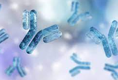 The Contribution of Artificial Intelligence to the Manufacturing of Antibody Drugs