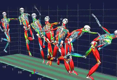Impact of Motion Capture in Biomechanical Science