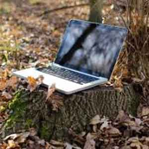 Embracing Remote Workplaces
